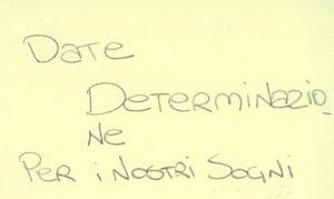 06 determinazione